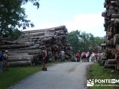 Ruta senderismo Peñalara - Parque Natural de Peñalara; viajes senderismo verano